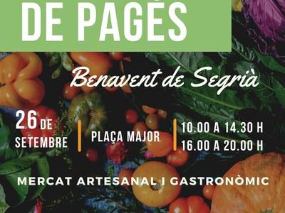 Benavent de Segrià celebra el II Mercat de Pagès amb tallers, exposicions i activitats